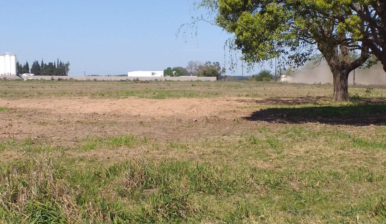 5,2 Ha Zona industrial San Pedro (1)