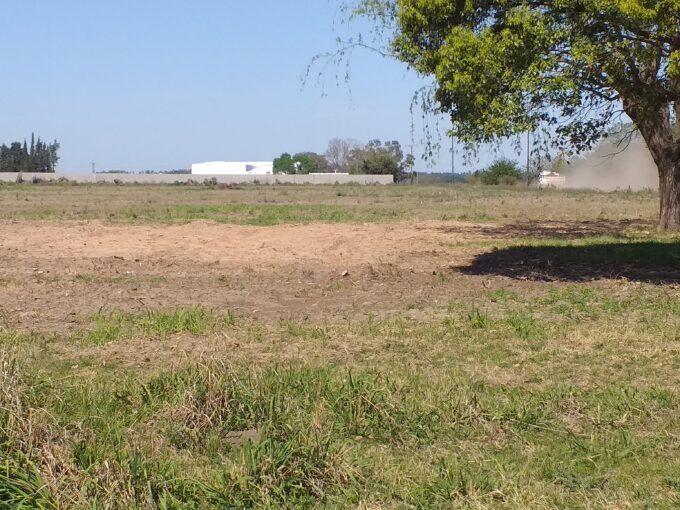 Campo en San Pedro