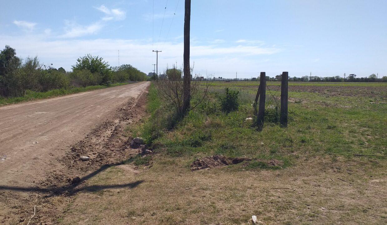 5,2 Ha Zona industrial San Pedro (2)