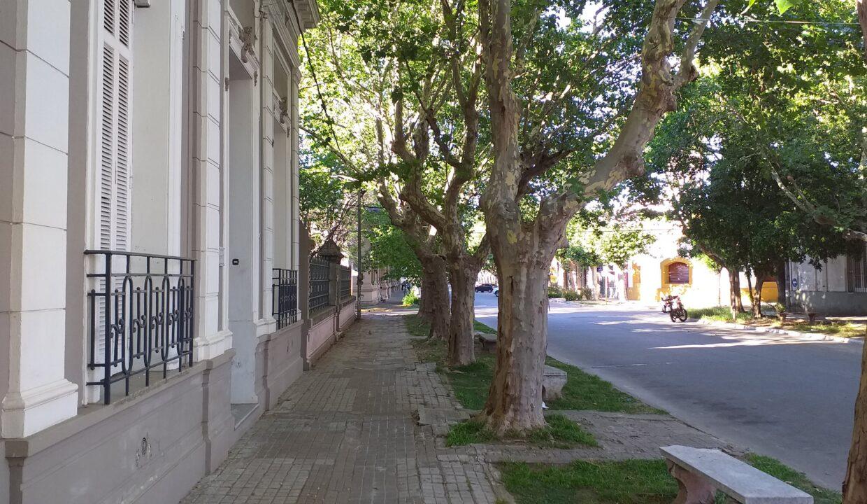 Casona Historica - Pellegrini 60 San Pedro (7)