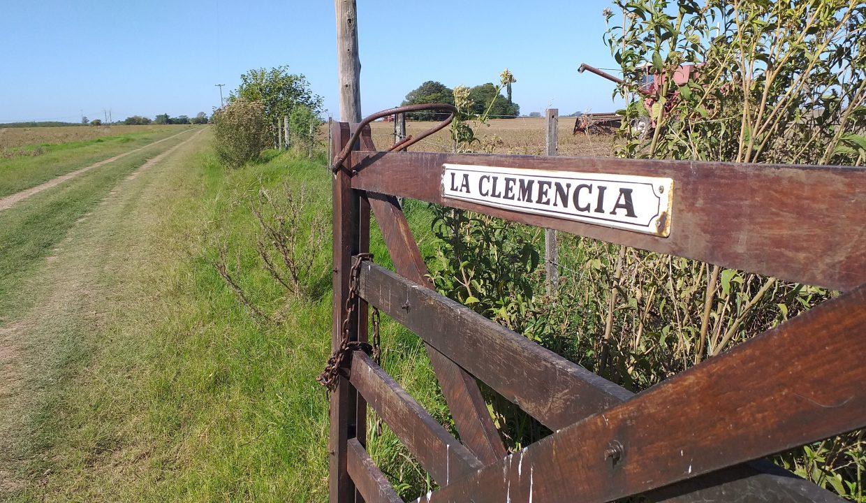 36 Ha La Clemencia (6)